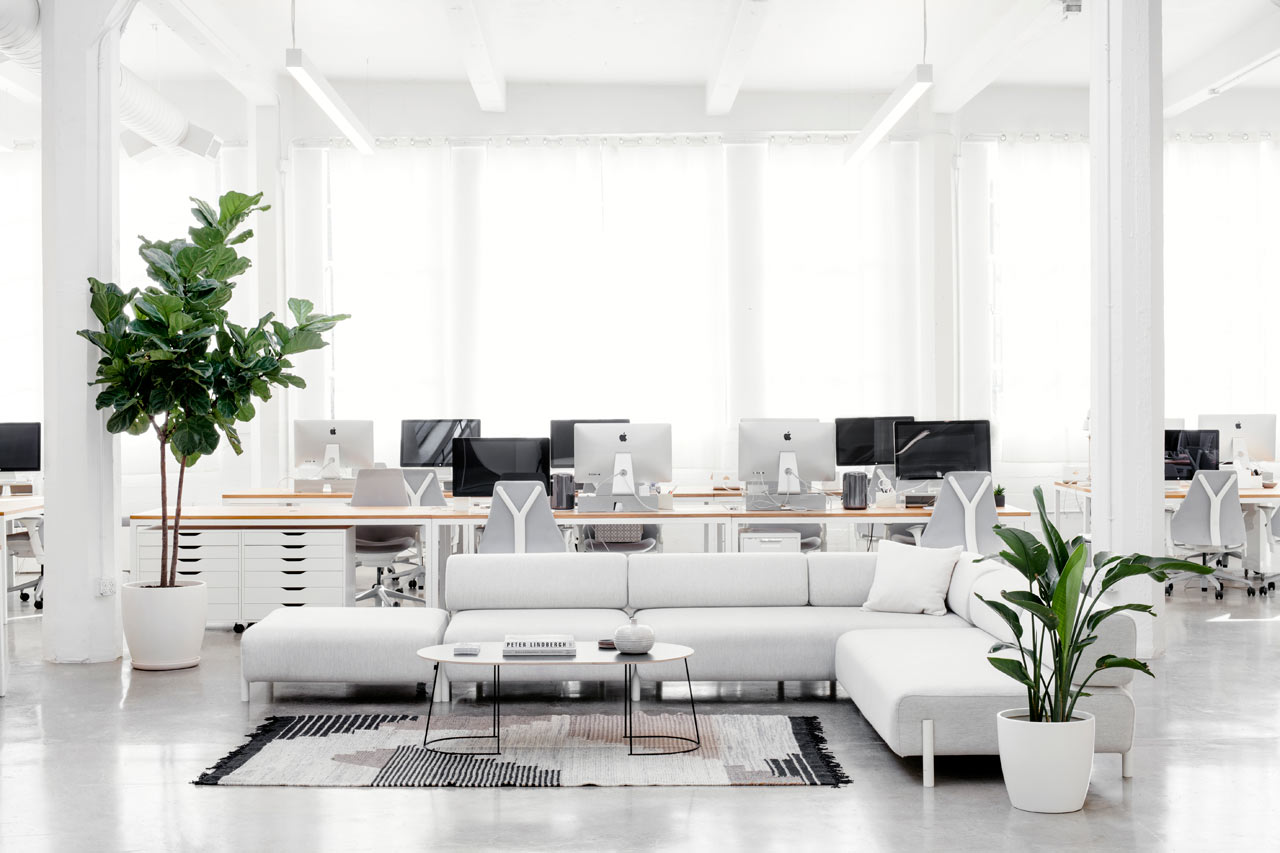 Светлый ковёр в белом интерьере офиса