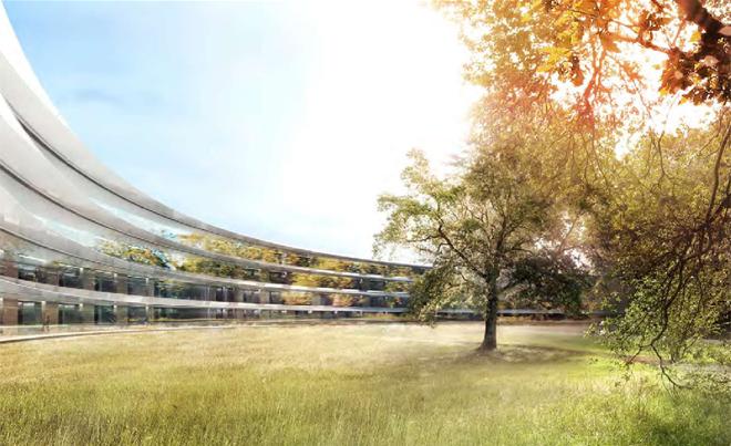 Внутренний сад будущей штаб-квартиры компании Apple