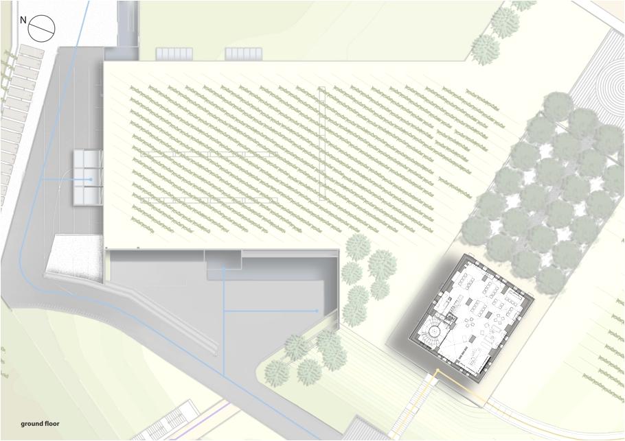 Проект завода с плантациями
