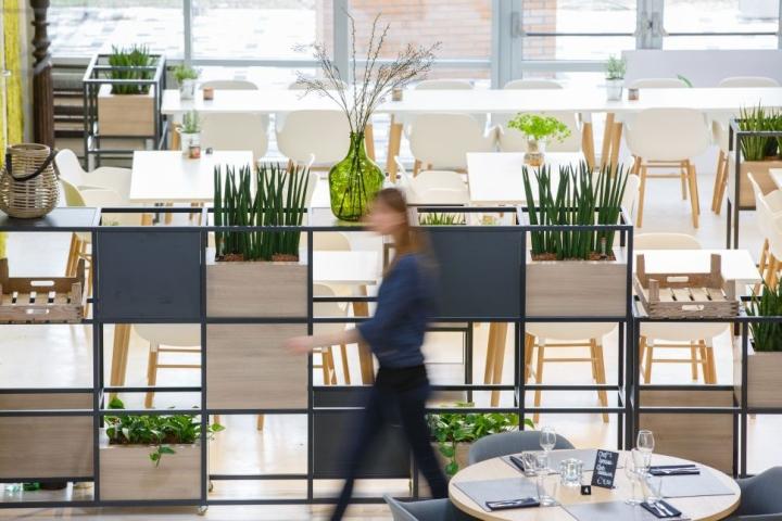 Дизайн интерьера кулинарной школы: растения в декоре