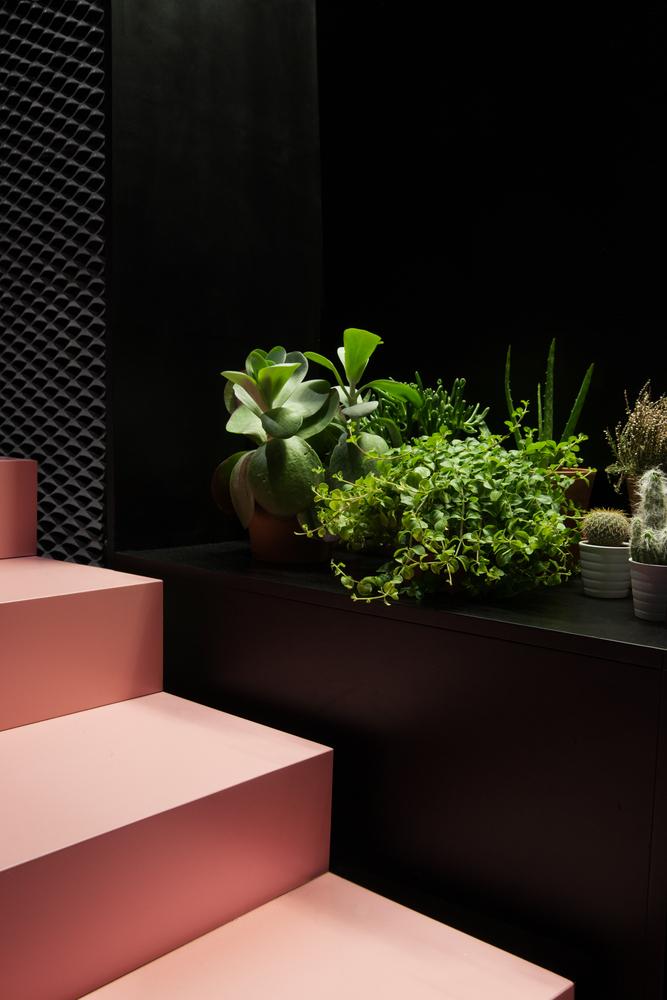 Розовая лестница - Фото 3