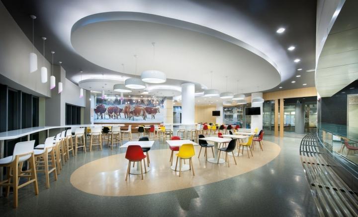 Дизайн ярких стульев в интерьере аудитории