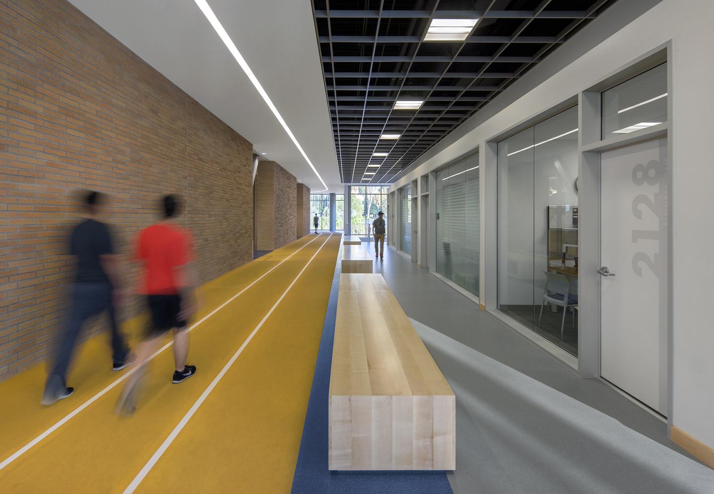 Дизайн спортивного комплекса – Зал для лёгкой атлетики