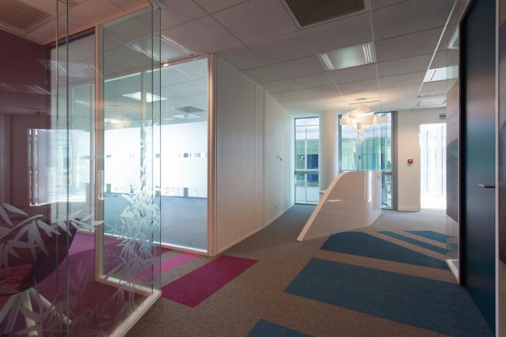 Фото на стенах офиса - яркие цвета в оформлении интерьера