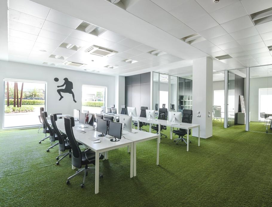 Зеленое ковровое покрытие в офисе