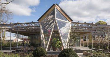 Интерьер больницы в домашнем стиле с садом