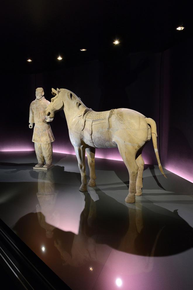 Выставка в историческом музее: фигура терракотового воина с конём