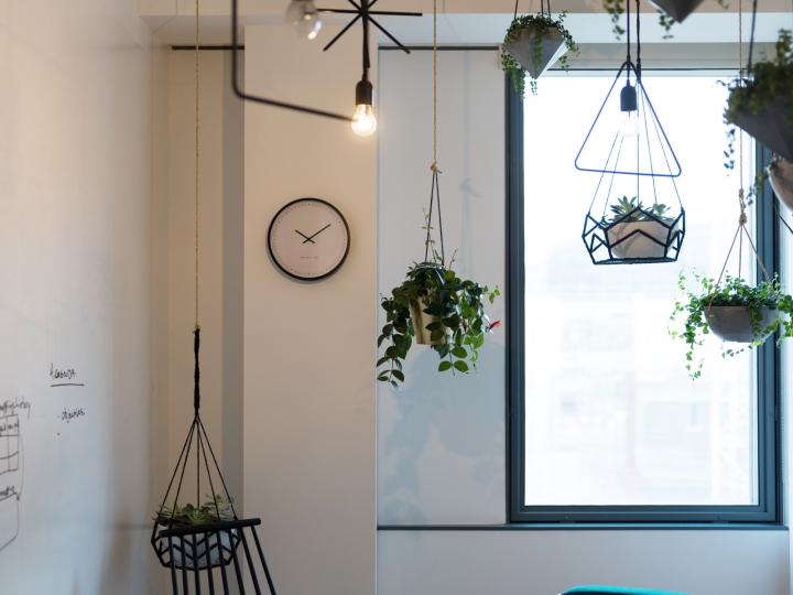 Креативное оформление офиса: растения подвешены к потолку