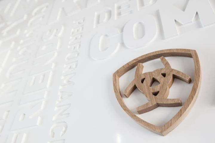 Креативное оформление офиса Ariat - логотип. Фото 1