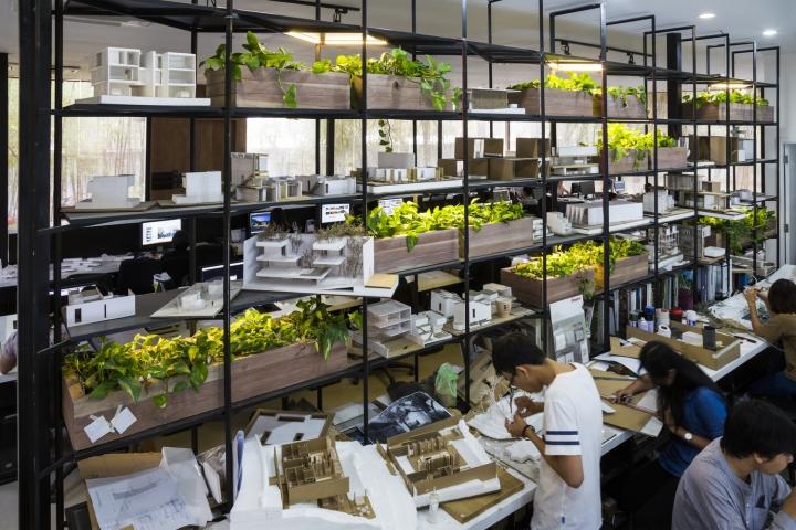 Интерьер рабочего офиса: зелень