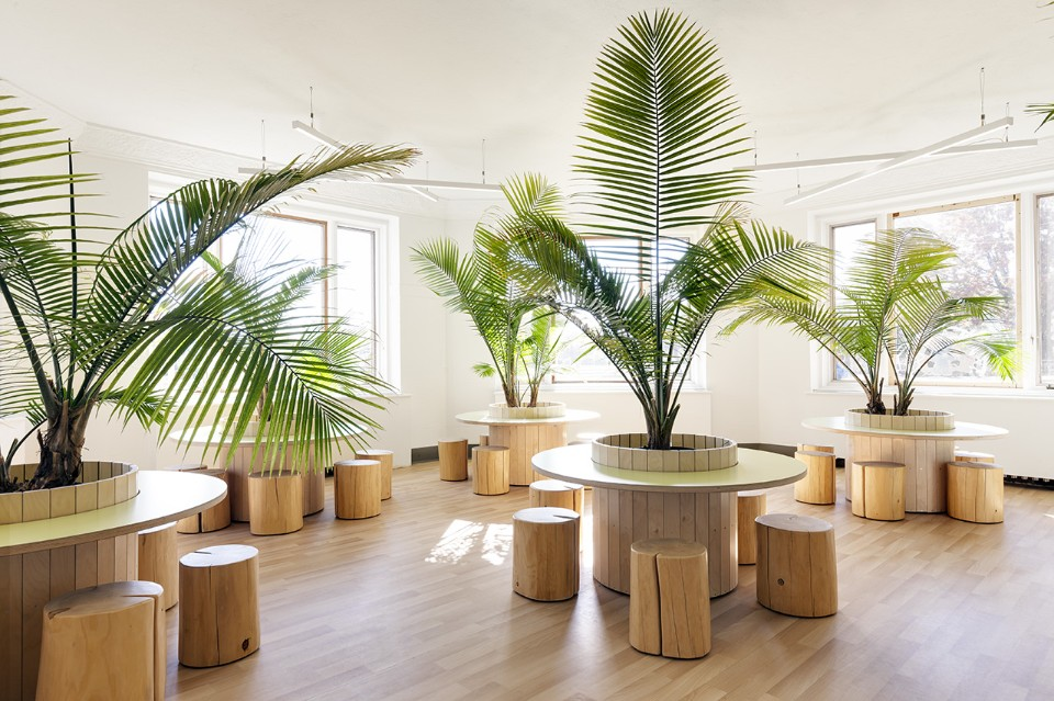 Необычный интерьер школы: светлый эко дизайн библиотеки