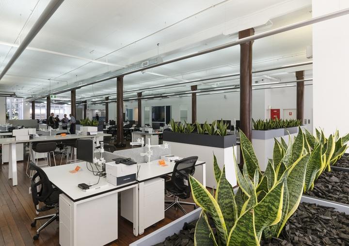 Оформление интерьера офиса Co-op: живая зелень