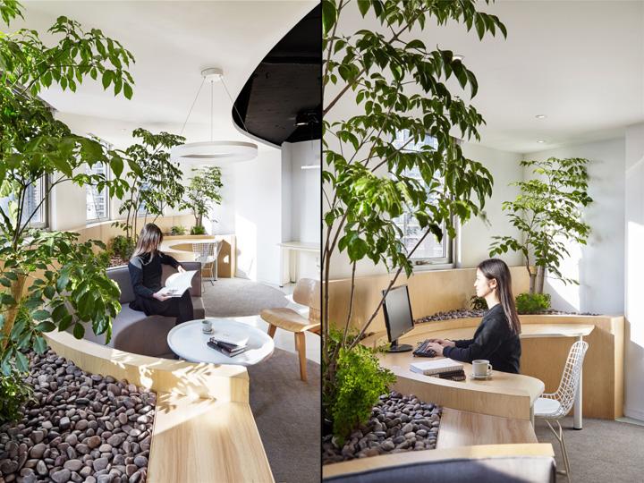 Растения в интерьере офиса от Muxin Design - места для работы и отдыха