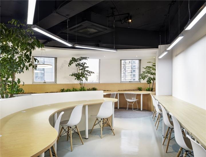 Растения в интерьере офиса от Muxin Design - изогнутые формы офиса