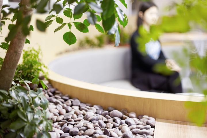 Растения в интерьере офиса от Muxin Design - камни крупным планом