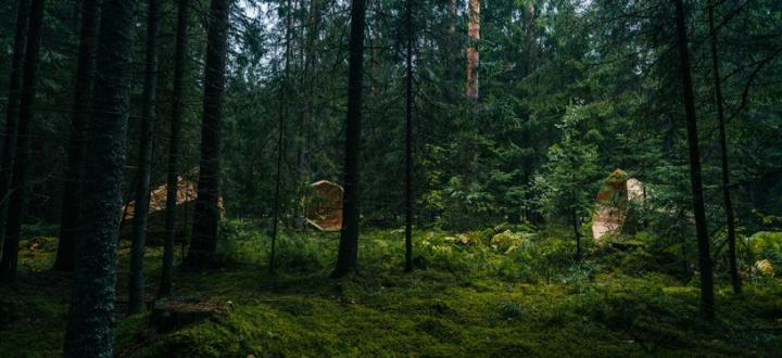 Дизайн деревянного конуса для отдыха - Фото 6