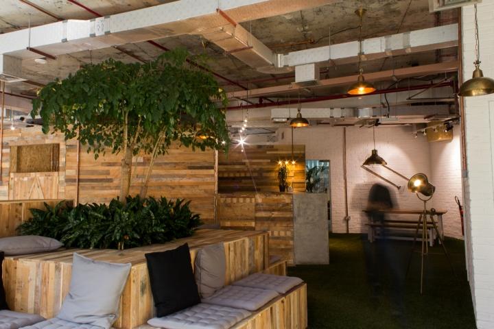 Создание интерьера офиса: массивные растения