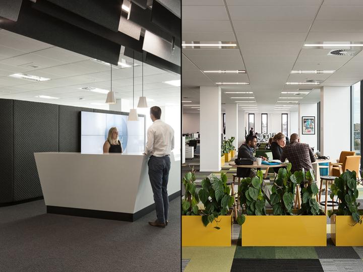 Создание интерьера офиса в Окленде, Новая Зеландия: офис без заграждений
