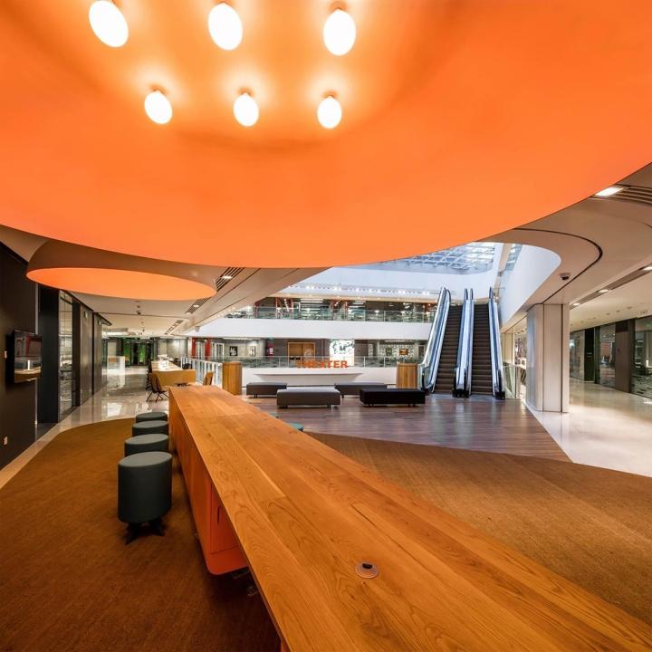 Дерево в оформлении современного офиса