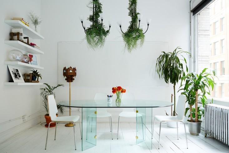 Ярко-зелёные цветы в интерьере офиса