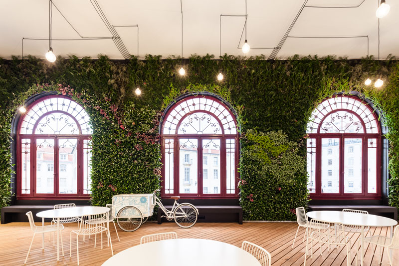 Яркий интерьер офиса: зелень в декоре